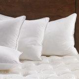 Wholesale Cheap Soft Duck White Color Cheap Goose Down Pillows