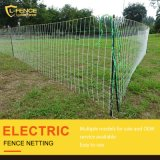 Poultry Farm Fence Equipment Electric Chicken Netting