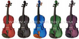 Violin / Colour Violin / Musical Instruments