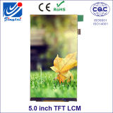 4.98′′ 480*854 Resolution Fwvga TFT LCM