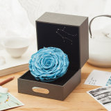 Hot Sell New Preserved Rose Flowers Gift for Birthday