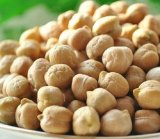 Wholesale Cheap Price Canned Chickpeas