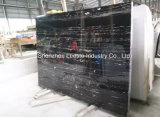Hot Selling Silver Dragon Marble Slabs Marble Tiles with Best Quality of The Marble