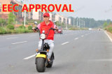 EEC Approved Electric Scooter Citycoco Long Range Electric Scooter