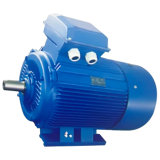 Cast Iron Electric Motors (280S-2P-75KW)