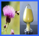 High Purity Milk Thistle Extract Silymarin