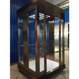 Customized Nova Residential Building Passenger Elevator Lift Price
