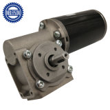 63mm High Torque Right Angle 24V DC Worm Gear Motor