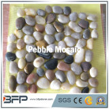 Polished Pebble Mosaic Tiles for Outside Flooring with Multi Color