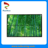 10.1-Inch 1280 * 800 40 Pin 350 Brightness TFT LCD Display