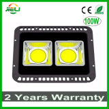 Outdoor Project 100W LED Floodlight