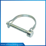 Hot Dipped Galvanized/ Powder Coated Drop Forged DIN/Us/JIS Standard D Shaped Ring