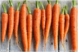 New Crop Bulk Carrot with Best Price From Fujian Farmland