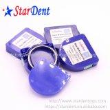 Dental Matrix Roll Bands Steel Matrice Bands of Lab Hospital Medical Surgical Diagnostic Dentist Equipment