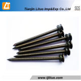 40 Mm Ring Shank Common Nails Electric Galvanized