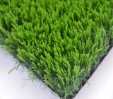 Vs Artifical Grass for Landscape Synthetic Green