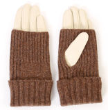 Lady Fashion Sheepskin Leather Warm Gloves with Acrylic Cover (YKY5154)