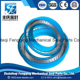 Energized PTFE Bronze Spring Seal for Hydraulic Cylinder
