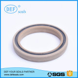 Spring Energized Seals for Cylinder