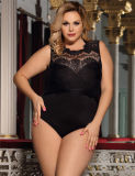 in Stock 3XL Plus Size Black Lace Sexy Lingerie