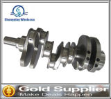 Brand New Crankshaft for Land Rover 3.0 China Supplier