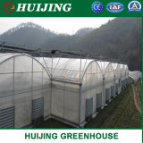 Cheap Wholesale Plastic Film Greenhouse/Protective Plastic Film
