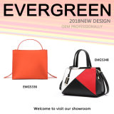 Genuine Leather Collision Color Tote Lady Bag Wholesale (EMG5348)