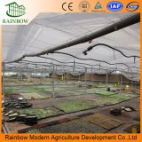 Greenhouse Water Saving Equipments Drip Irrigation System