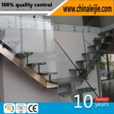 Stainless Steel Balustrade / Glass Railing / Handrail