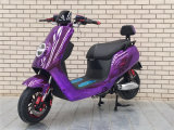 Lower Price Big Tire 60V 1000W Electric Motorcycle