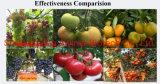Multi-Element Cheap Hot-Selling Fruits Increase Fertilizer