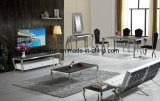 Classic & Modern Tempered Glass Top Stainless Steel Dining Table
