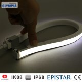 Under Water Ce RoHS Neon Heat Resistant LED Strip Light