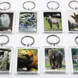 Wholesale Cheap Custom Fashion Expo Travel Souvenirs Plastic Clear Blank Lenticular Photo 3D Printed View Acrylic Keychain for Promotional Gift