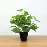 Look Real Heart Shaped Artificial Floor Plants with Pot