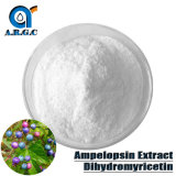 98% Natural Ampelopsin Extract Powder Dihydromyricetin CAS 27200-12-0