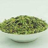 Yunnan Yhc Broken Green Tea