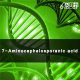 High Quality 7-Aminocephalosporanic Acid with Good Price (CAS 957-68-6)