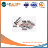 Tungsten Carbide Tool Holders with K10 K20 Mining Tips