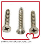 Self Tapping Screw Stainless Steel 304 316 DIN7981 DIN7982, Machine Screws, Self Drilling Screws