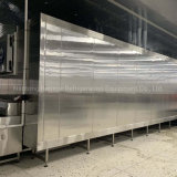 Factory Customized Quick IQF Blast Tunnel Freezer for Shrimp/Seafood/Meat/Fruit/Vegetable with Ce/ISO9001/SGS