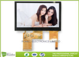 Good Quality 4.3 Inch High Resolution 800 X 480 Capacitive Touch LCD Display Screen