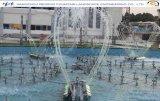 Outdoor Pool Mechanical Music Dancing Fountain