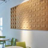 Eco-Friendly Decoration Pet Acoustic Panel for Music Studio