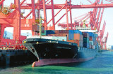 International Sea Freight Shipping From Shenzhen FCL to Cote D′ Ivoire