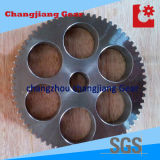 OEM Precision Straight Teethed Transmission Spur Gear with Different Teeth