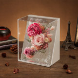 Promotion Preserved Flower for Christmas Decoration