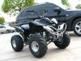 Ce Motorcycle 110cc ATV 125cc ATV for Kids