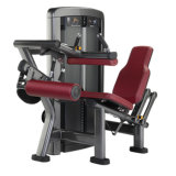 Hammer Strength Curl Machine Workout Seated Leg Curl Xh908