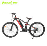 Europe 250W 36V 29 Inch 10 Speed Electric Bicycle Middle Motor with 13 Ah Li-ion Battery